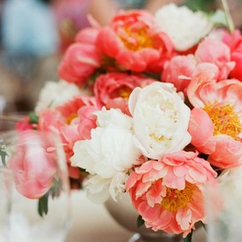 Peony Roots (Spring-Planted) - Coral Bouquet Mix