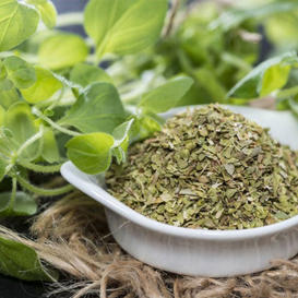 Oregano Seeds (Organic) Greek
