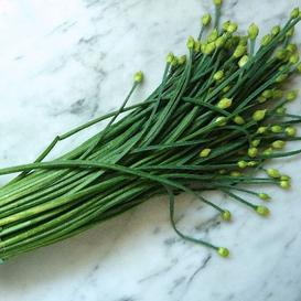 Chives Seeds - Garlic - 5 Pounds