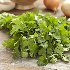 Cilantro/Coriander Seeds - Leisure Splits - Packet