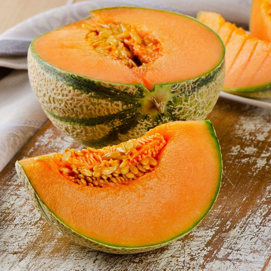 Charentais Melon Seeds