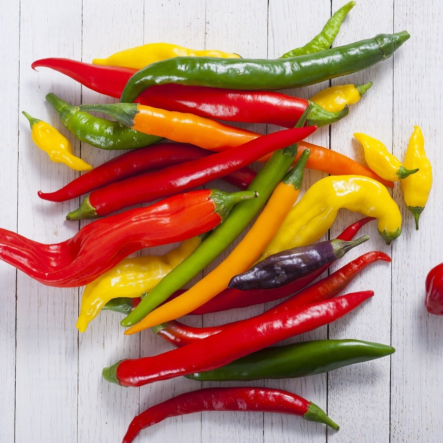 PEPPER SEEDS - On Sale Now   by the Packet or in Bulk!