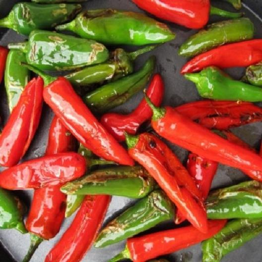 Fresno Chile Pepper Seeds Buy Seeds By The Packet Or In Bulk At Edenbrothers Com