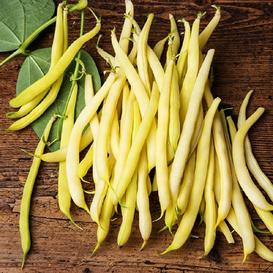 Bean Seeds (Bush) - Golden Wax