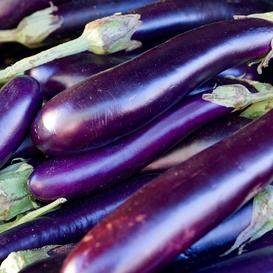 Eggplant Seeds - Long Purple