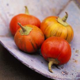 Eggplant Seeds - Turkish Orange