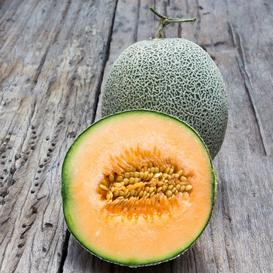 Melon Seeds - Edisto 47