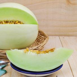 Melon Seeds (Organic) - Honeydew Green