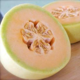 Melon Seeds - Honeydew Orange