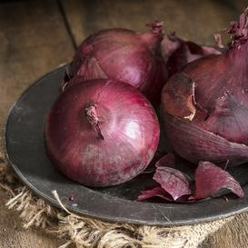 Onion Seeds (Long Day) - Ruby Red