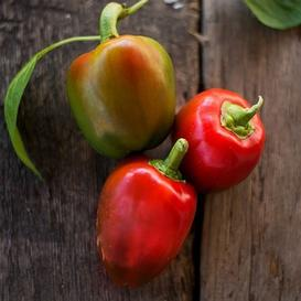 Sweet Pepper Seeds - Pimento