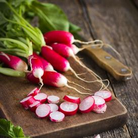 Radish Seeds - French Breakfast