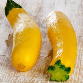 Squash (Summer) Seeds - Early Prolific Straightneck