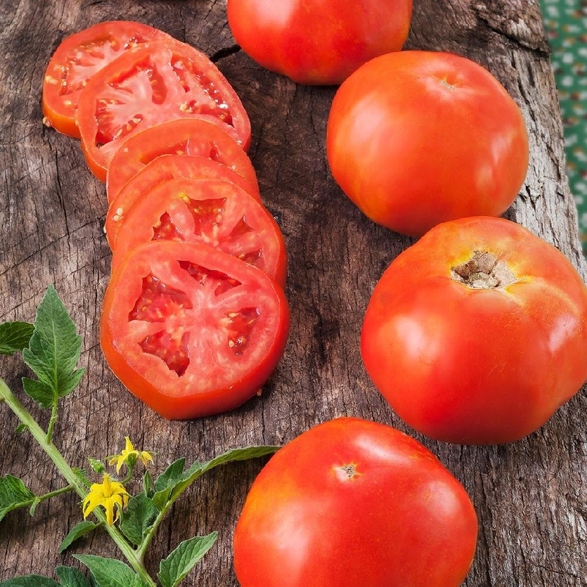 Tomato Seeds - Rutgers VF