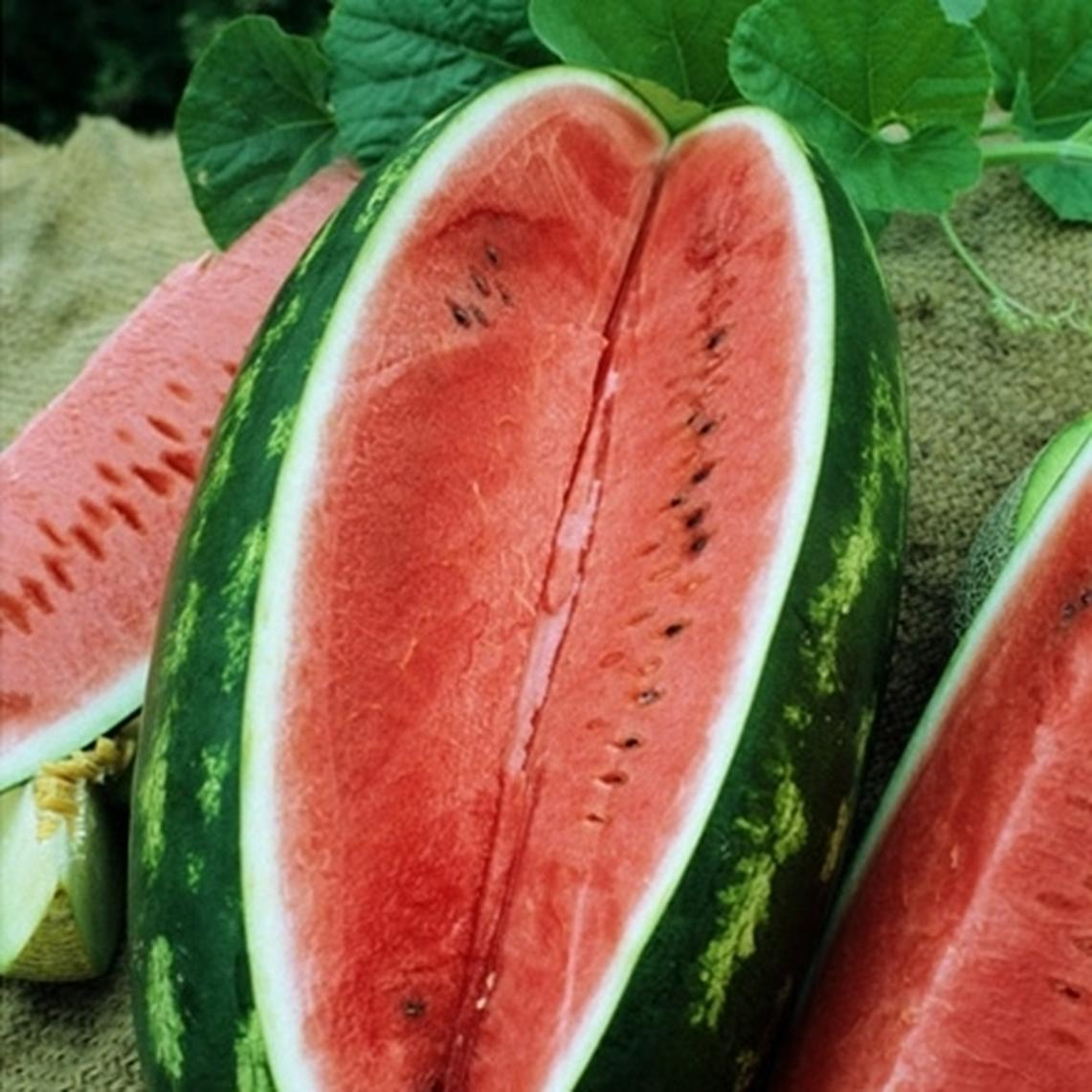 Watermelon Seeds - All Sweet